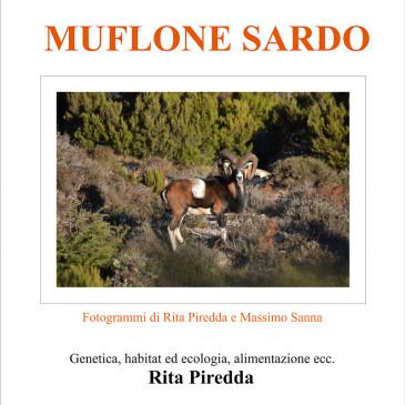 La natura del muflone sardo