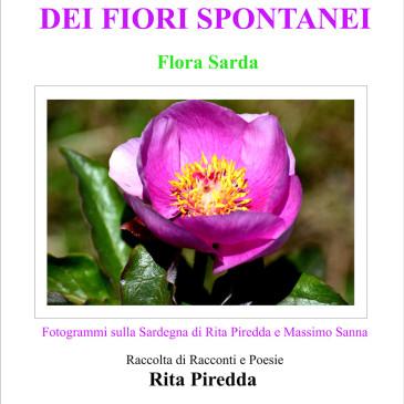L'incanto dei fiori spontanei